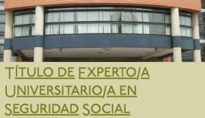 titulo experto universitario en seguridad social